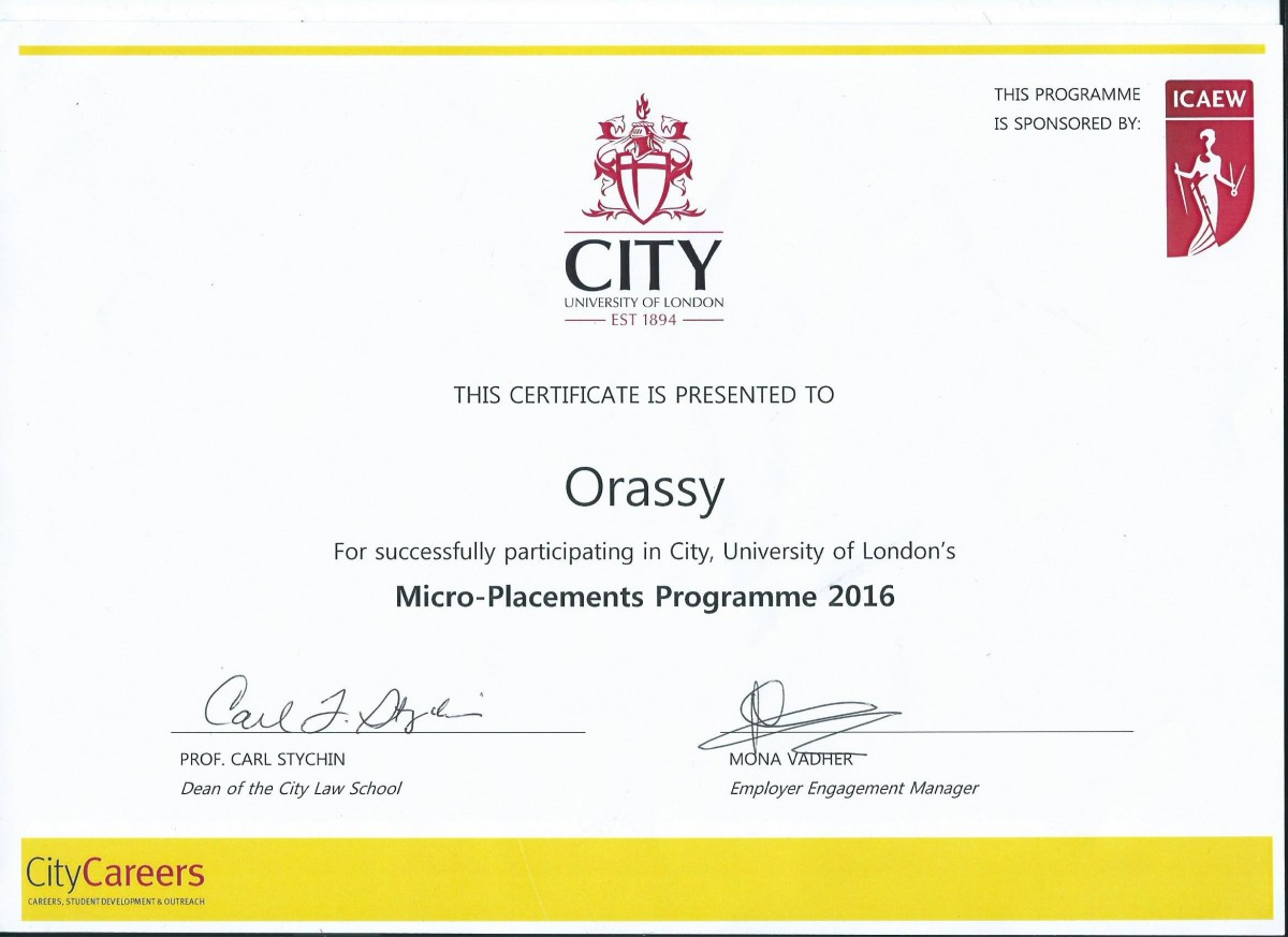 micro-placments-programme-certificate